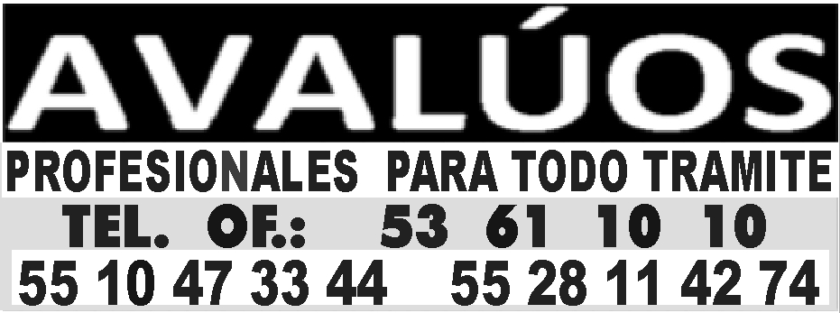 AVALUOS 53611010